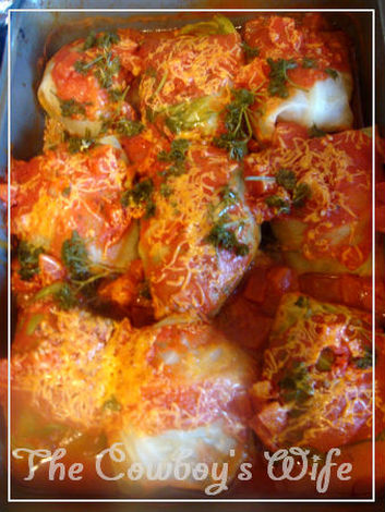 Stuffed Cabbage Tomato